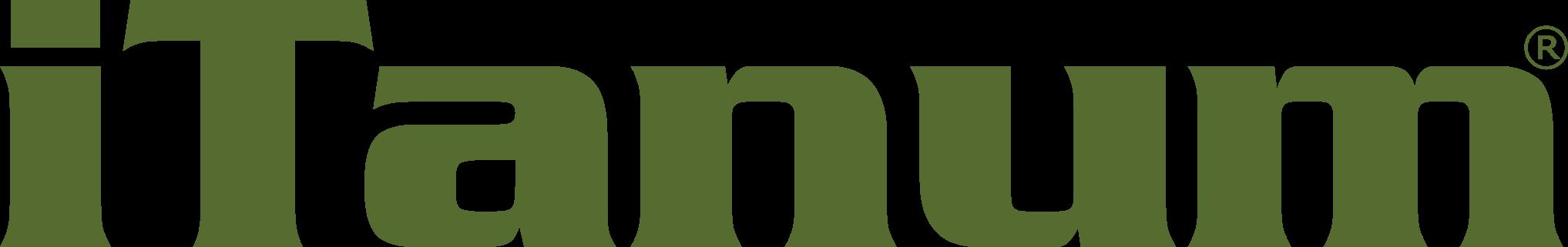 Internetagentur iTanum® in Pirna - Webdesigner Till H. Kleinert